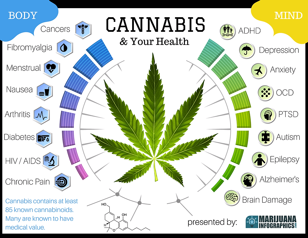 the medicinal properties of marijuana Sanjay gupta: only 6 percent of marijuana research considers medical benefits since scientists who study marijuana's potential medicinal properties have to wade through an enormous amount of federal red tape to do so, and they're not always successful.